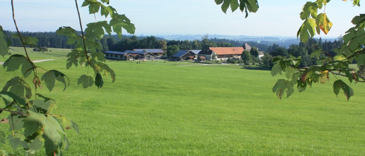 Permalink zu:Gut Grasleiten in Huglfing Bayern