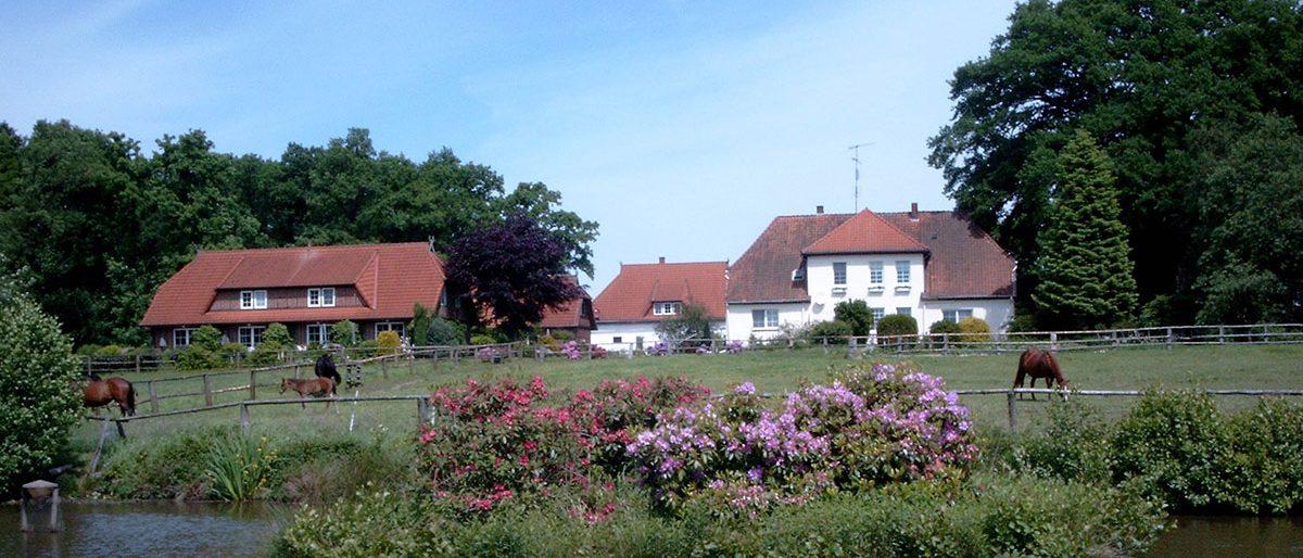 Permalink auf:Albers` Rosenhof in Bispingen-Behringen (Niedersachsen)