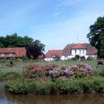 Albers` Rosenhof in Bispingen-Behringen (Niedersachsen)
